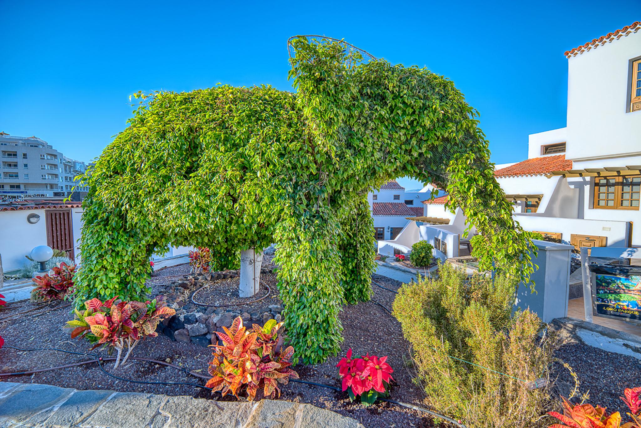 Hotel Rosas Garden 2